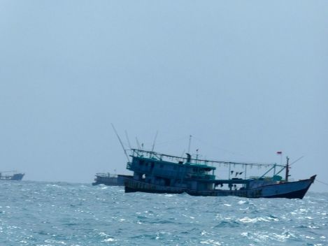 Day 4 fleets of fishing boats pass