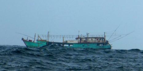 Day 7 Fish boat 1