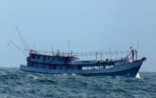 Day 7 fish boat 2