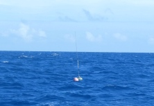 Fishing net buoy adrift and floating free