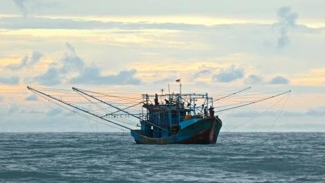 fish boat 2