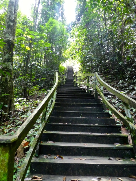 temburong steps